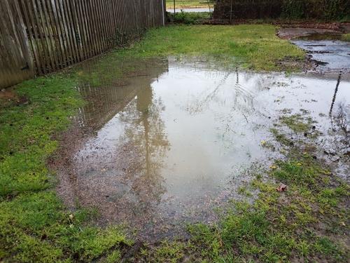 Backyard Drainage & Flooding Solutions   Island Sewers